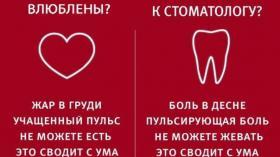 Что общего между любовью и болью зуба