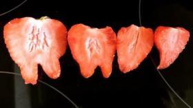 Как видит клубнику стоматолог