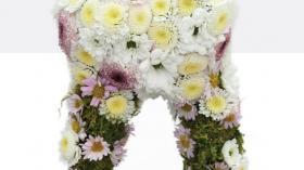 Цветочный зуб