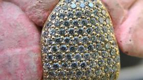 Грилз на зуб