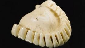 Верхний зубной протез из слоновой кости (1760г.)