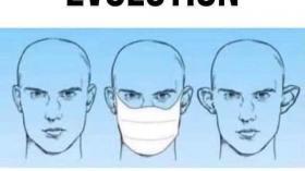 Эволюция ушей