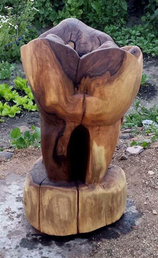 Зуб из дерева