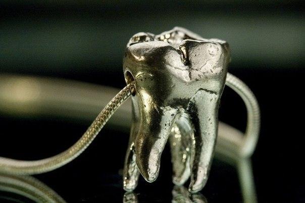 Трофейный зуб