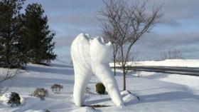 Зуб из снега 2