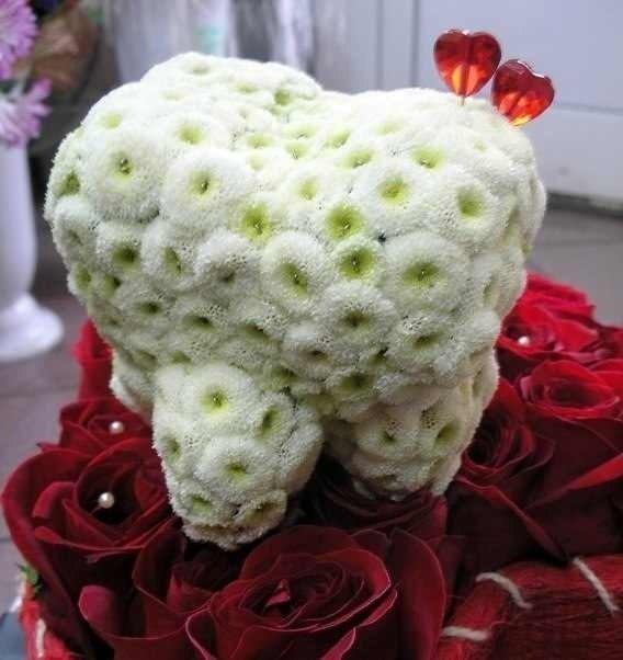 Цветы для любимого стоматолога