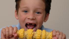 Кукурузная траншея