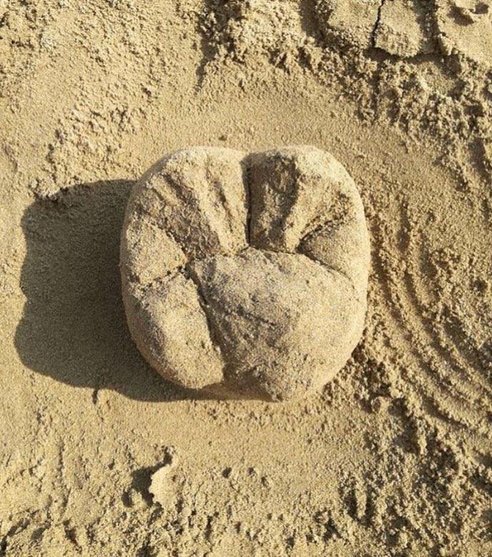Зуб из песка 13