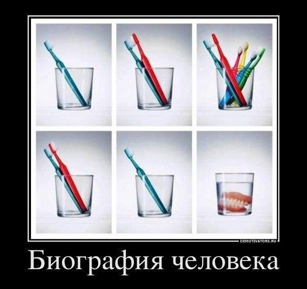 Жизнь человека на примере зубных щеток