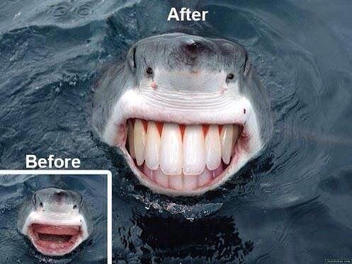 Акула после посещения стоматолога
