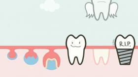 Жизнь зуба