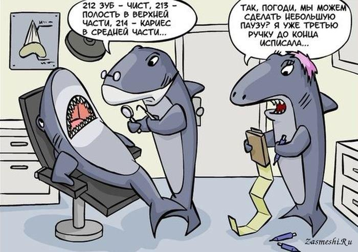 Акула на приеме у стоматолога