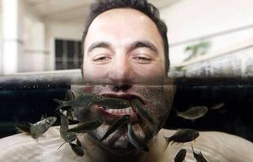 Рыбки-стоматологи