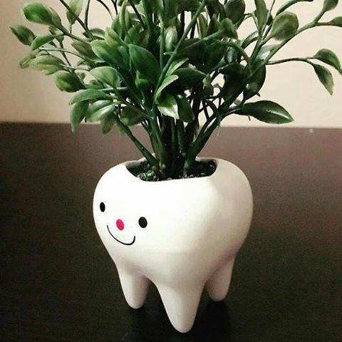 Горшок-зуб для цветка 3