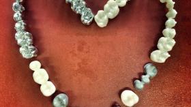 Зубная любовь 6