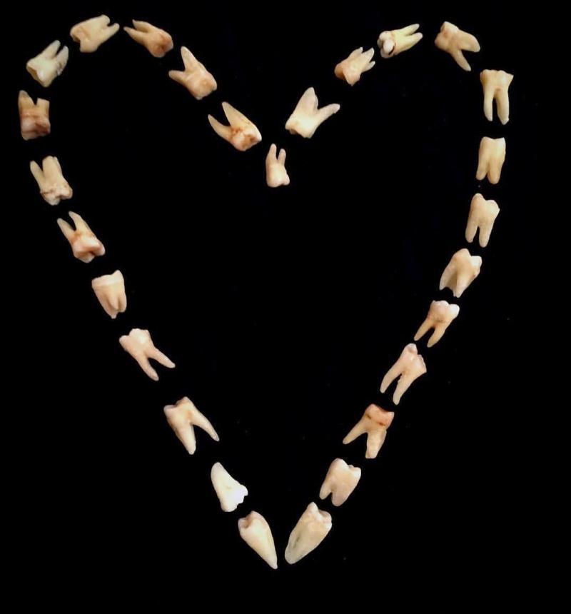 Зубная любовь 10
