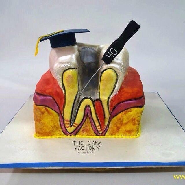 Торт эндодонтический 6