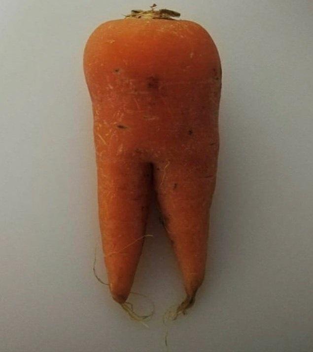 Морковный зуб 3