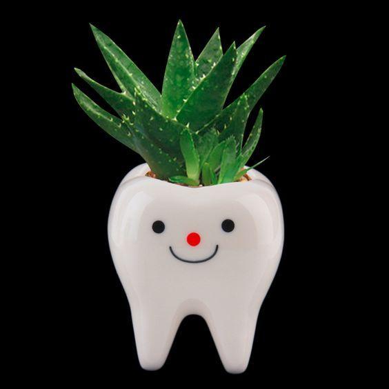 Горшок-зуб для цветка 4
