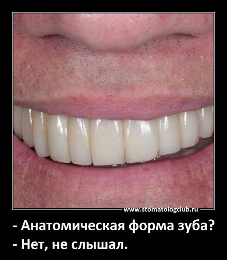 Анатомическая форма зуба