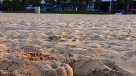 Зуб из песка 19