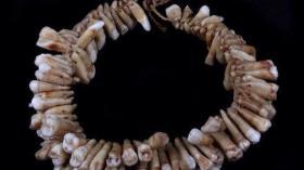 Ожерелье из человеческих зубов