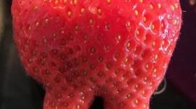 Клубничный зуб