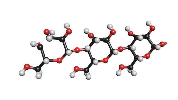 Обнаружили полисахариды, направленное действие на которые может способствовать уничтожению бактерий, вызывающих кариес
