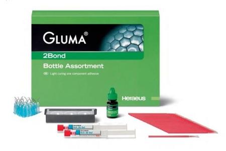 адгезивная система семейства Gluma - Gluma 2bond