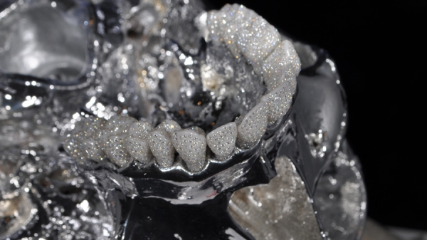 Precious Bones (драгоценные кости) - Eternal smile (Вечная улыбка) - череп с зубами, украшенными тысячами бриллиантов