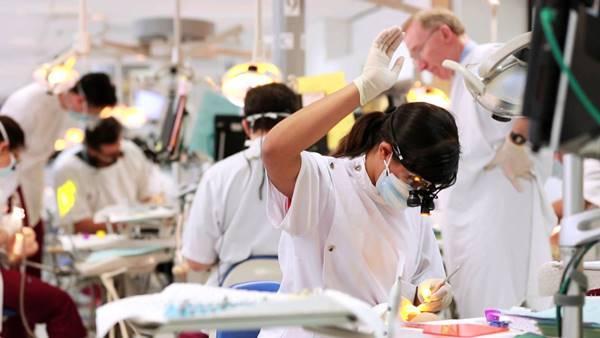 Как выстроить систему обучения врачей и администраторов в стоматологической клинике?