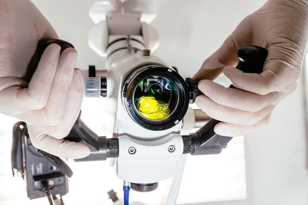 Как выбрать и купить стоматологический (дентальный) микроскоп