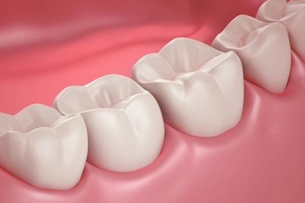 Международная группа приблизилась к возможности выращивать искусственные ткани зуба