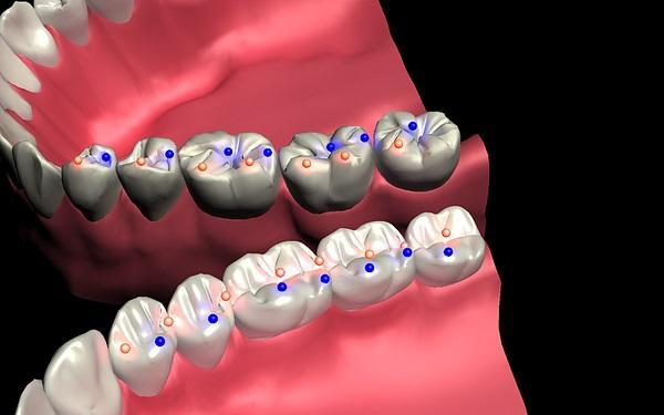 Основы окклюзии и биомеханики челюстей: новый взгляд на старые концепции