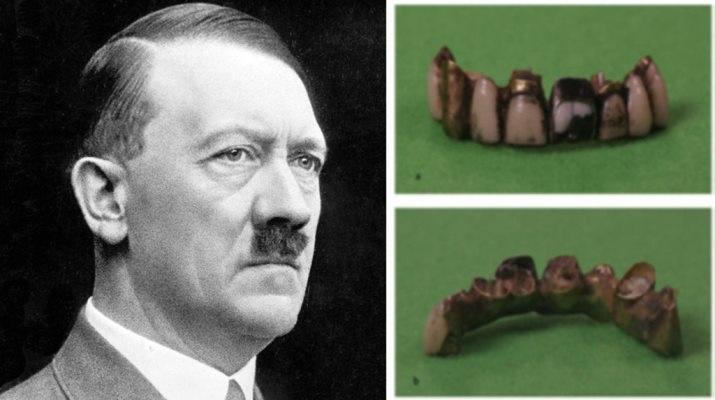 Проведя анализ зуба Гитлера, ученые установили, что он действительно умер в 1945 году, приняв яд