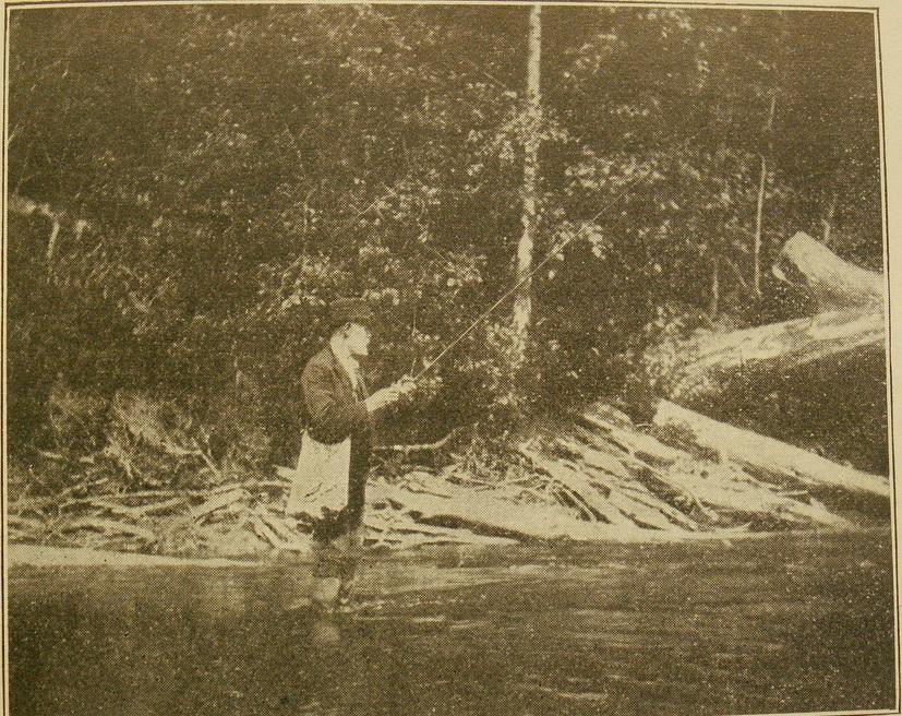 "Д-р Блэк на рыбалке на реке ""Реки Карпа"" (Мичиган)"