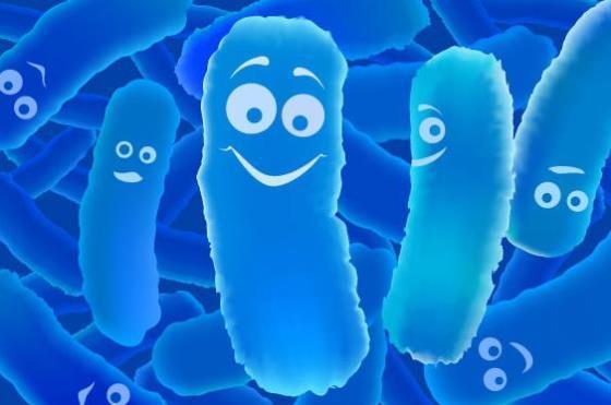 Бактериоцин подавляет рост бактерий p.gingivalis и способствует восстановлению тканей