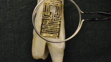 Зуб-сенсор раскрыл все секреты полости рта