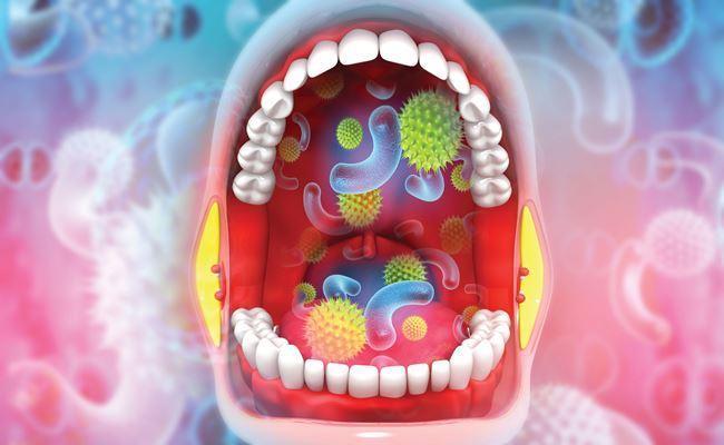 Девять видов бактерий в ротовой полости