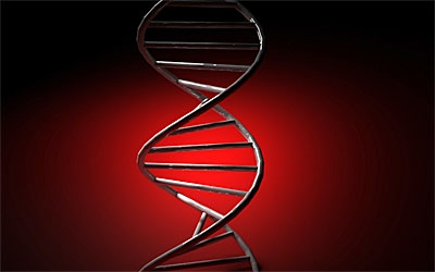 ген, зубная эмаль