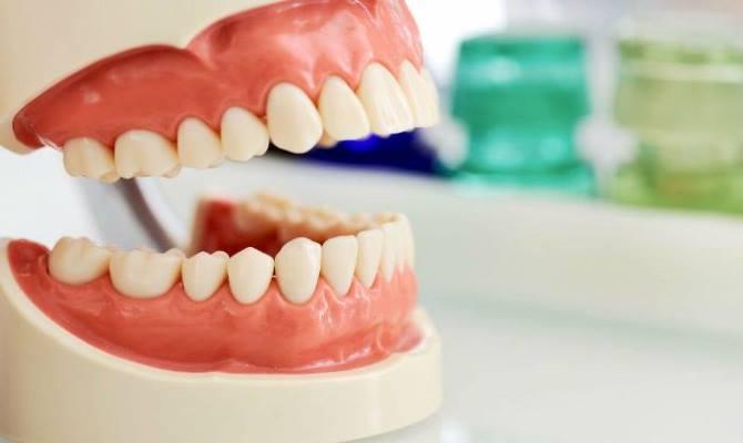 Дефицит зубного пространства: антропологический анализ проблемы
